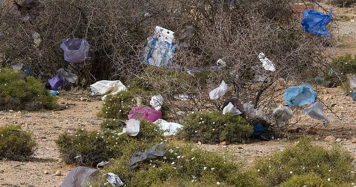 запретить пластиковые мешки и пакеты