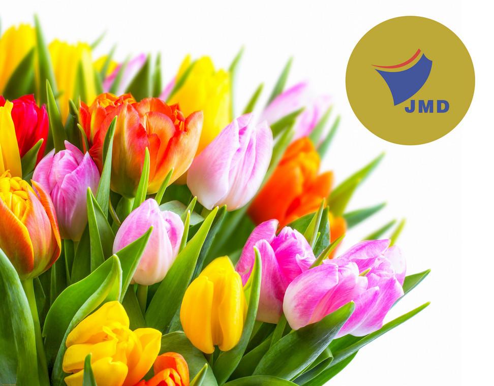 Jingmoda - с праздником 8 марта!